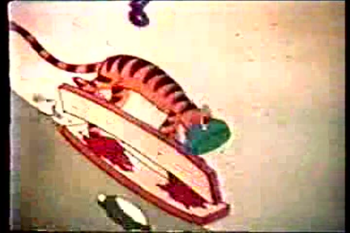 A tiger skis downhill on clapboards with a pail over his head and falls into a mud pit. (U.B.)