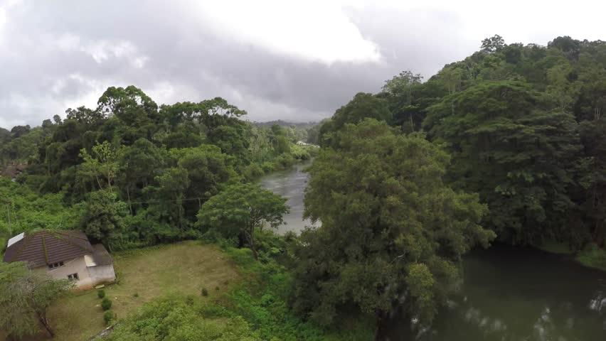 Jungle river africa the river in the jungle equatorial for Jungle furniture white river