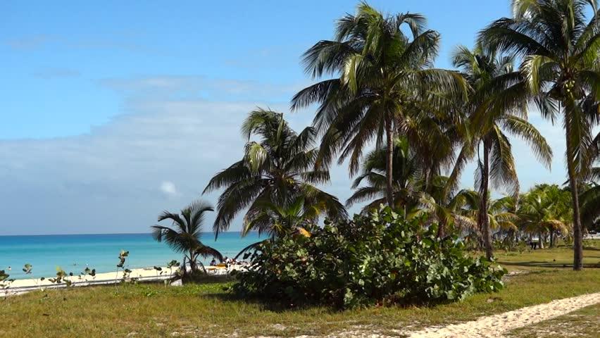 Beautiful tropical dream beache from Carribean.