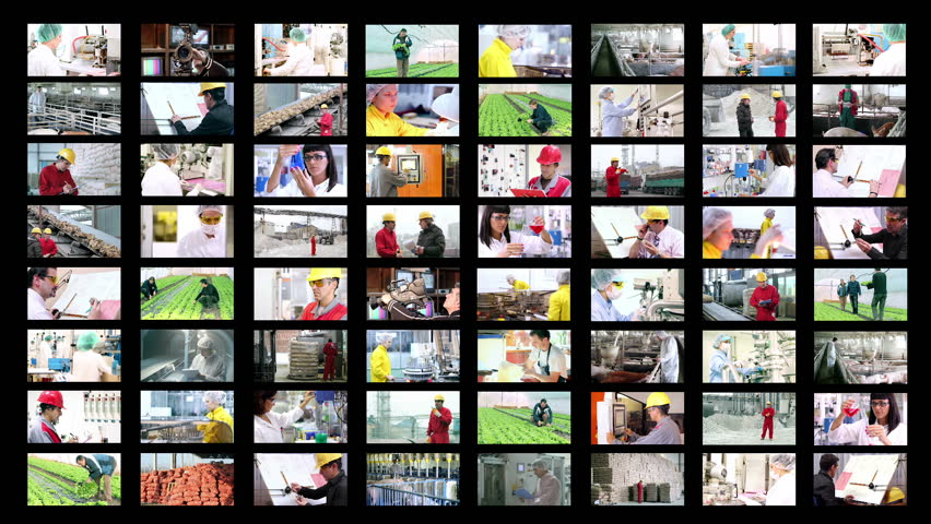 People at Work. Collage of video clips showing people of different professions at work. HD1080p. - HD stock video clip