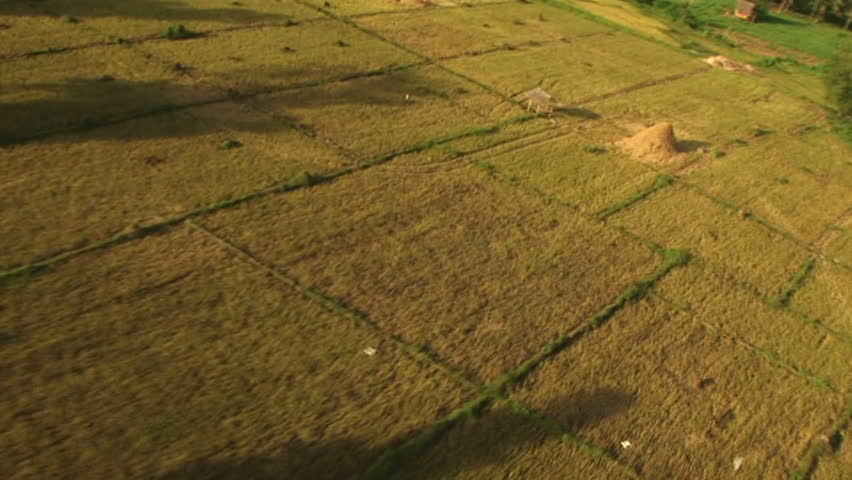 HD: Flying over farmland in the Philippines