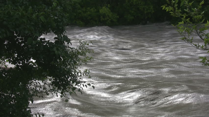 A view through trees, shot from the shoreline of a river after a flash flood - HD stock video clip