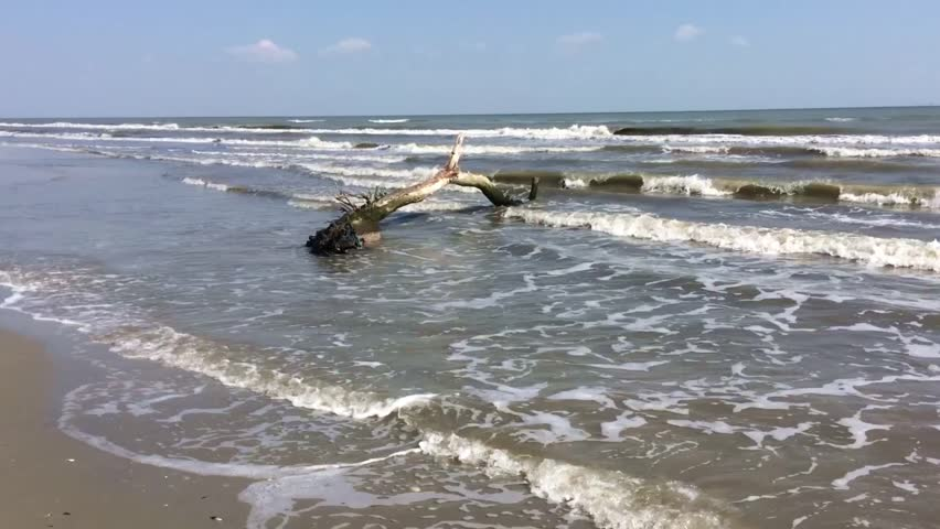 wild beach, waves at the black sea  #20212900
