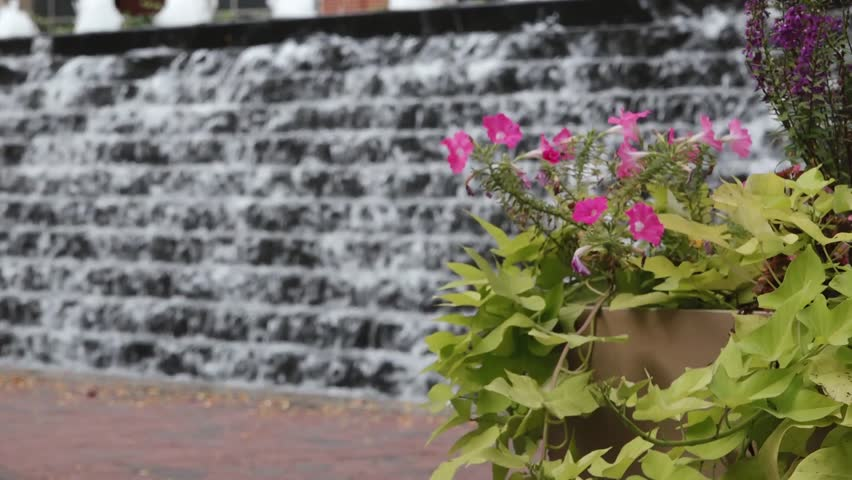 Water Feature Downtown Lexington Kentucky with Flowers in the Foreground | Shutterstock HD Video #21186124