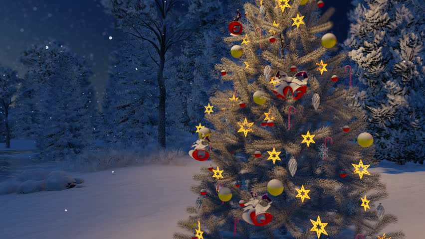 Christmas Tree With Home Outside Stock Footage Video