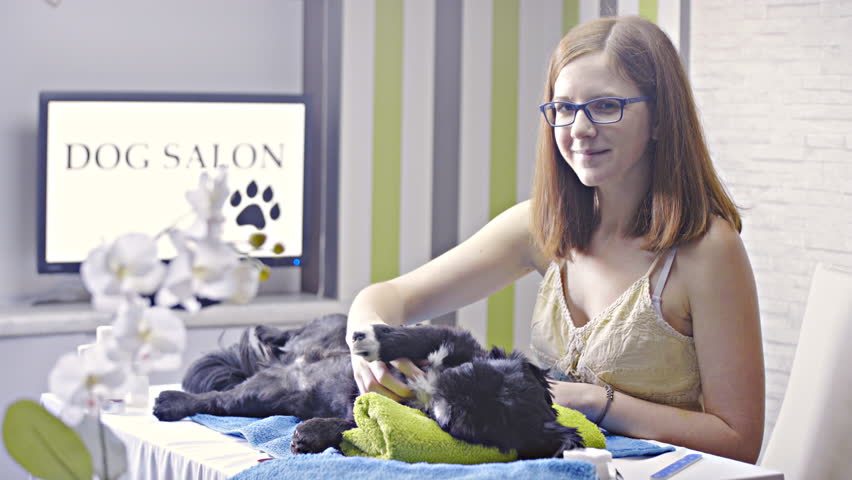 Woman caressing cute dog lying at dog salon and smiling in camera 4K. Dolly sliding from right to left with flower in front out of focus and person with dog in focus. Dog lying on towel table. | Shutterstock HD Video #21873769