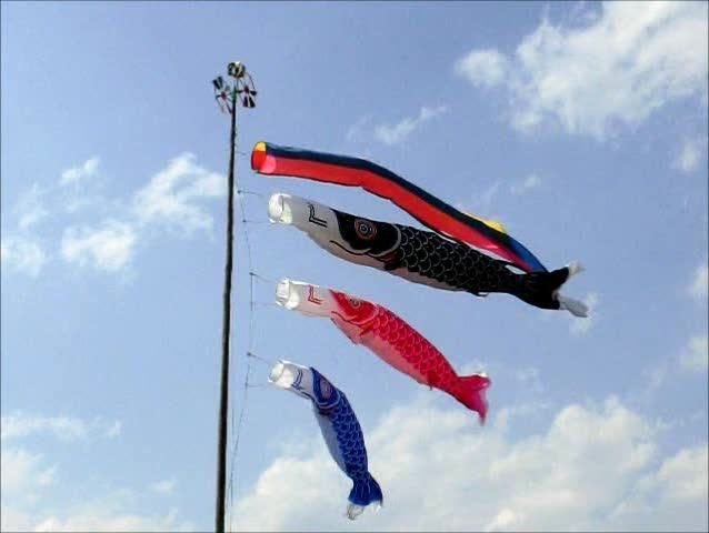 carp streamer (slow motion) 