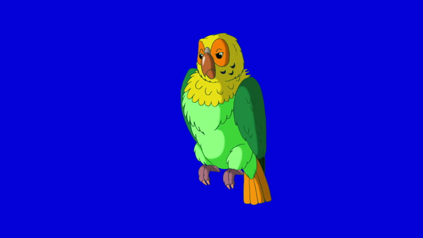 Green Parrot Talks. Animal on Blue Screen. Looped motion graphic. | Shutterstock HD Video #23184844