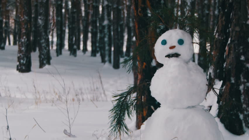 Snowman in a Pine Forest Standing Outdoors. Happy snowman stand in snowy forest with Snow-covered Christmas Trees. | Shutterstock HD Video #23196580