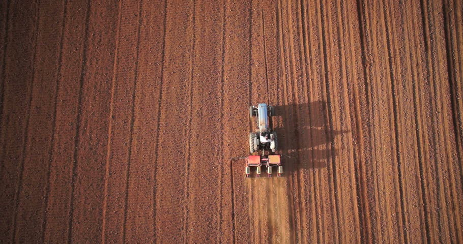 Aerial view of agricultural machinery mulchers and harvesters as they work in a field of maize or corn in perfect natural atmosphere | Shutterstock HD Video #23350525