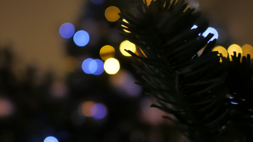 Fir branch and blinking garland bokeh. New year decoration. Handheld shot | Shutterstock HD Video #24117406