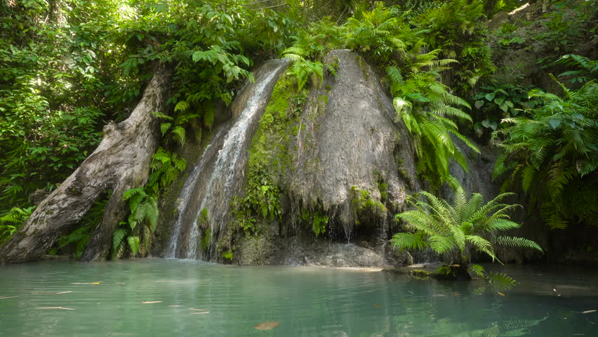Tropical rain forest with waterfall. Philippines, Cebu. 4K video. Travel concept.   Shutterstock HD Video #24130843