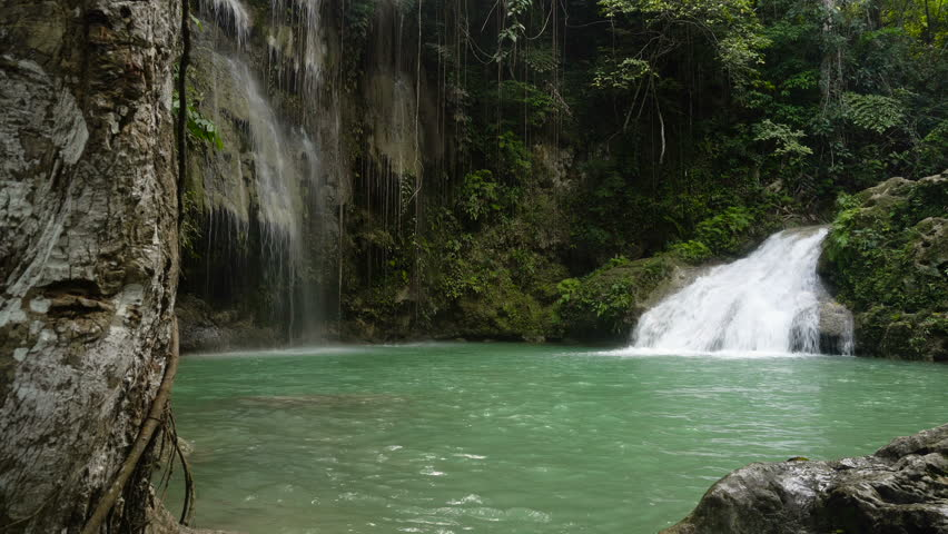 Tropical rain forest with waterfall. Philippines, Cebu. 4K video. Travel concept.   Shutterstock HD Video #24130906