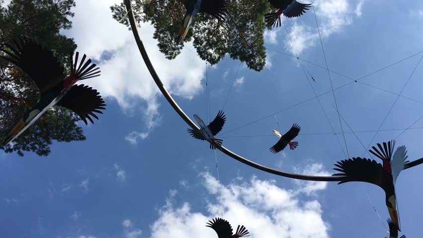Birds decoration spinning flying in sky background. Authentic shot. | Shutterstock HD Video #24143587