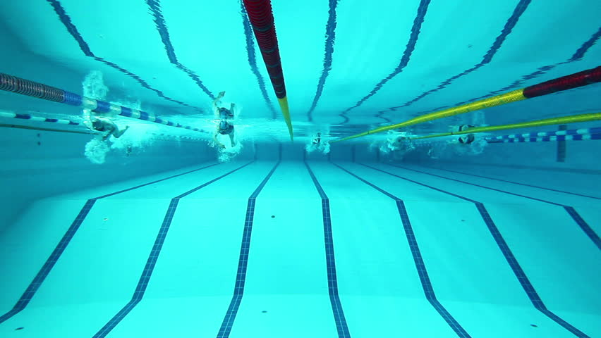 swimming pool and swimmer during the training - HD stock footage clip