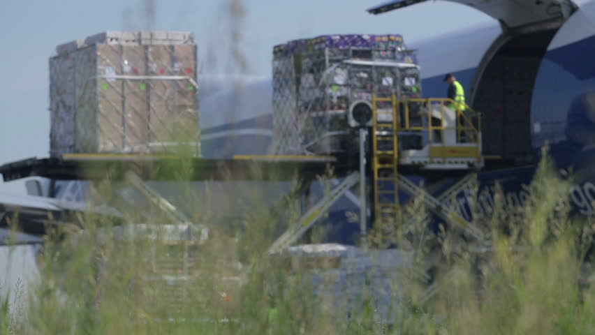 NOVOSIBIRSK, RUSSIA - JUNE 22: Unloading of cargo from the aircraft at the airport on June 22, 2012 in Novosibirsk, Russia.