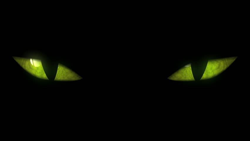 Cat Eyes Blinking Loop. Animation of cat eyes blinking. Seamless loop.
