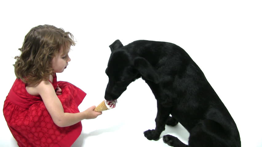 A girl sharing icecream together with her dog - HD stock video clip