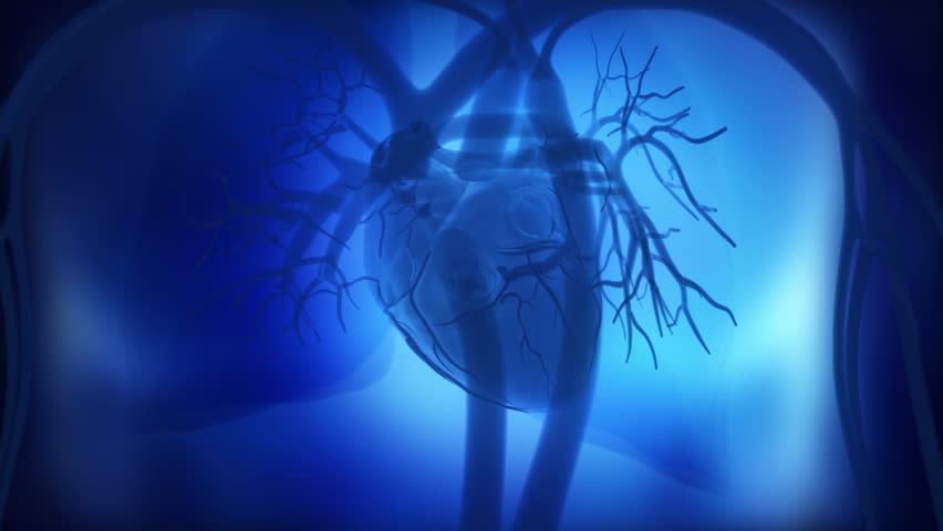 Heart beat concept in loop