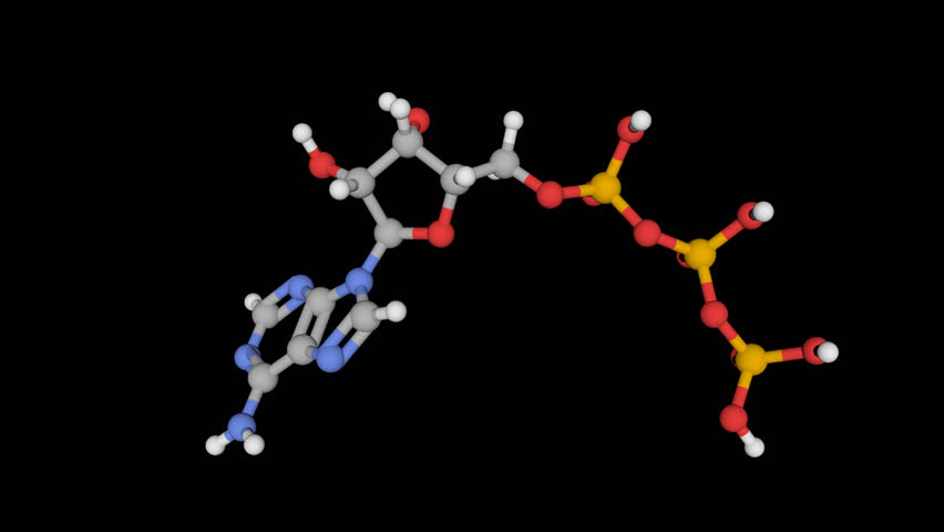 Header of adenosine triphosphate