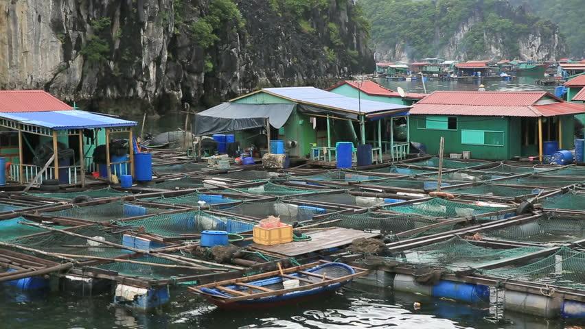 Floating fishing village in halong bay, Vietnam, Asia