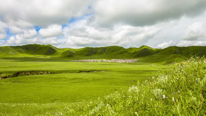 grassland with white cloud in summer,time lapse