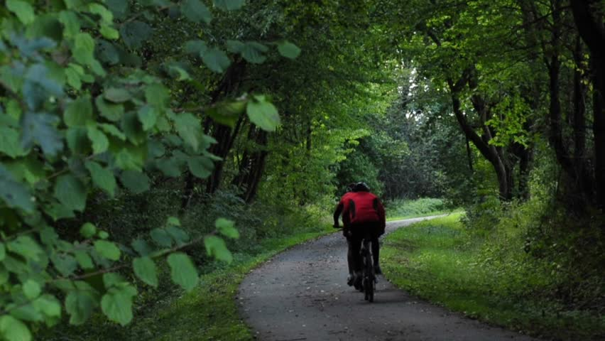 sport cyclists on a forest path - HD stock video clip