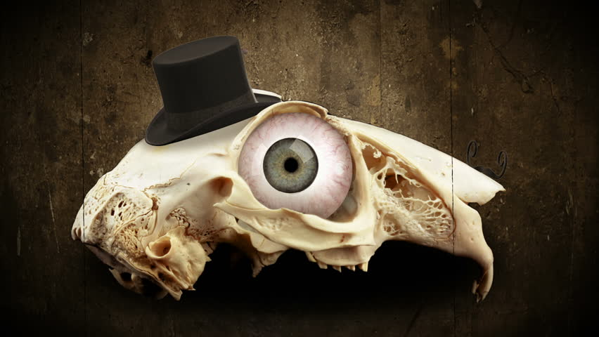 a rotating vintage rabbit skull with eyes, hat and mustache