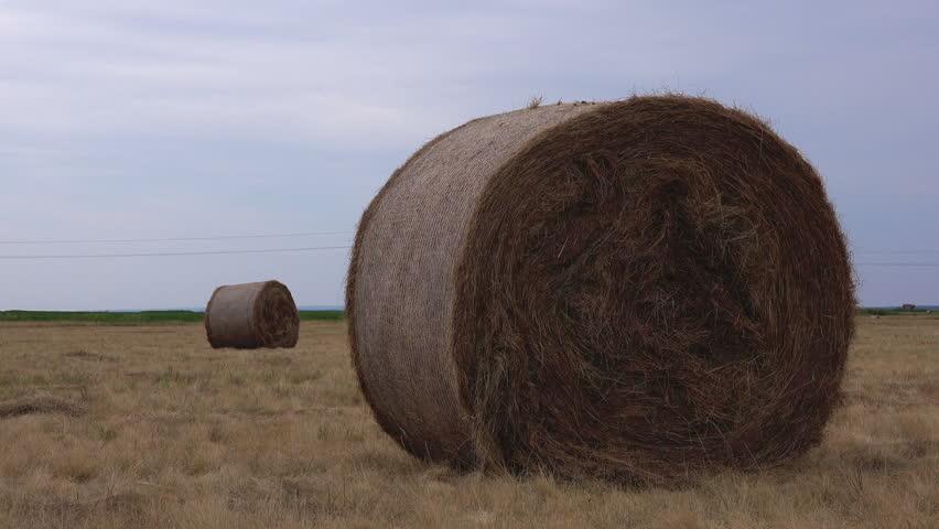 Header of hay bale