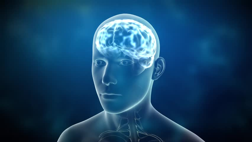 Neuronal Activity Male Blue Conceptual animation showing neuronal activity in the human brain. | Shutterstock HD Video #2962033