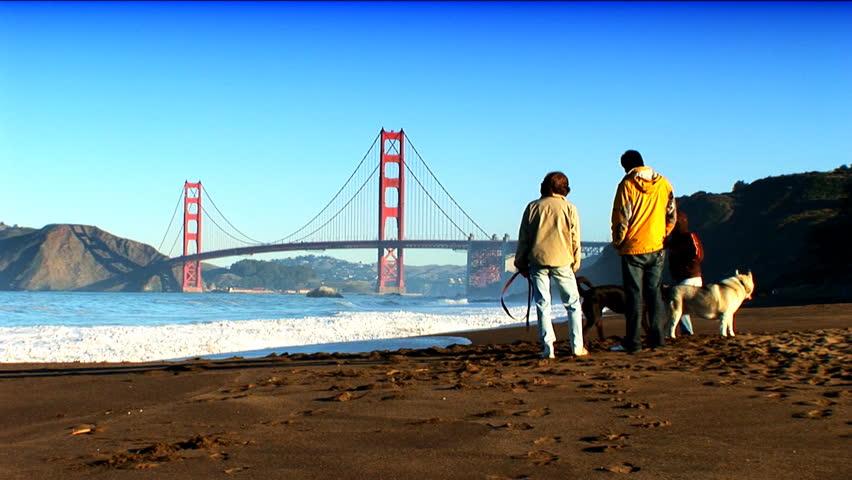 Golden gate bridge seen from the shoreline - HD stock video clip