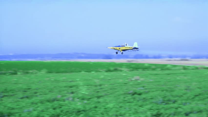 Irrigating The Potato plant by Plane.  A crop duster spraying a field of wheat while following the contours of the hills.