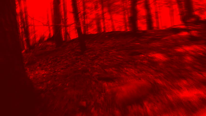 HUNTED. Forest chase scene. Timelapse POV shot with blood red filter. - HD stock video clip