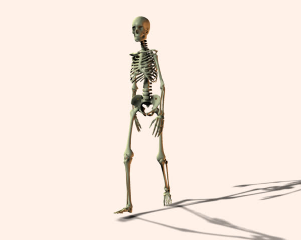 Walking skeleton - SD stock footage clip