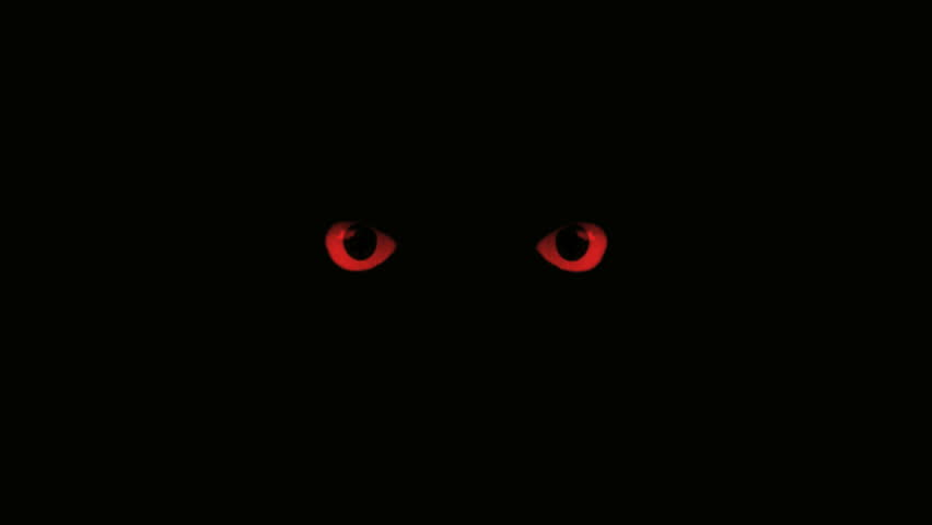 Black Cat With Pink Scary Eyes: Red Eyes Blink Stock Footage Video 3214015
