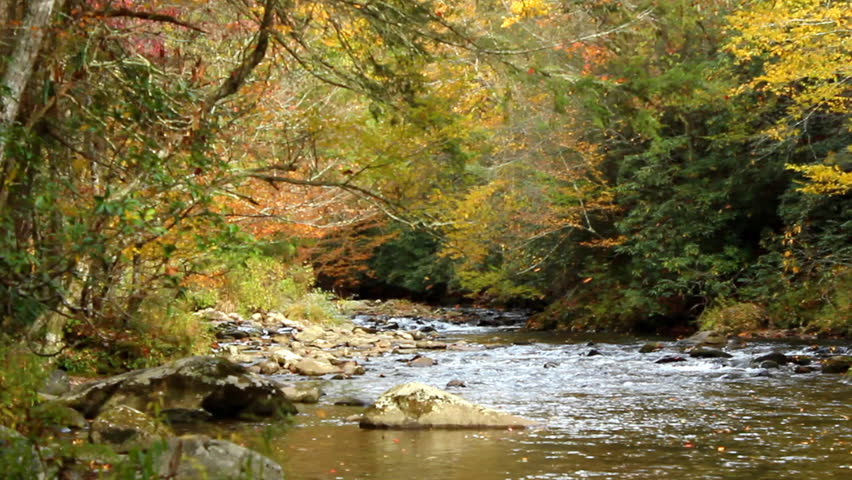 Autumn leaves fall into a scenic rocky river in Tennessee, USA - HD stock footage clip