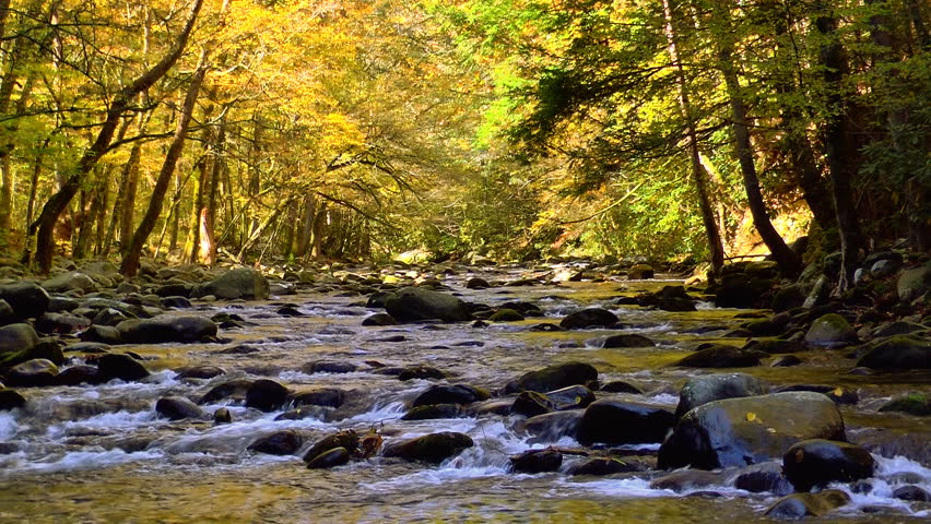 A river flows over rocks in this beautiful scene in the Tennessee mountains in autumn - HD stock video clip
