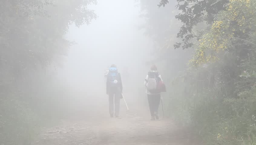 hikers hiking in the fog