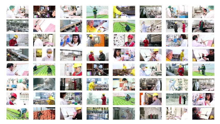 Working People. Teamwork. Business People. People at Work.