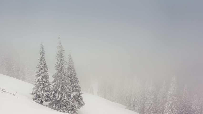 Beautiful winter landscape with snow covered trees. Carpathian, Ukraine. Time lapse, stop-motion clip. HD video (High Definition)