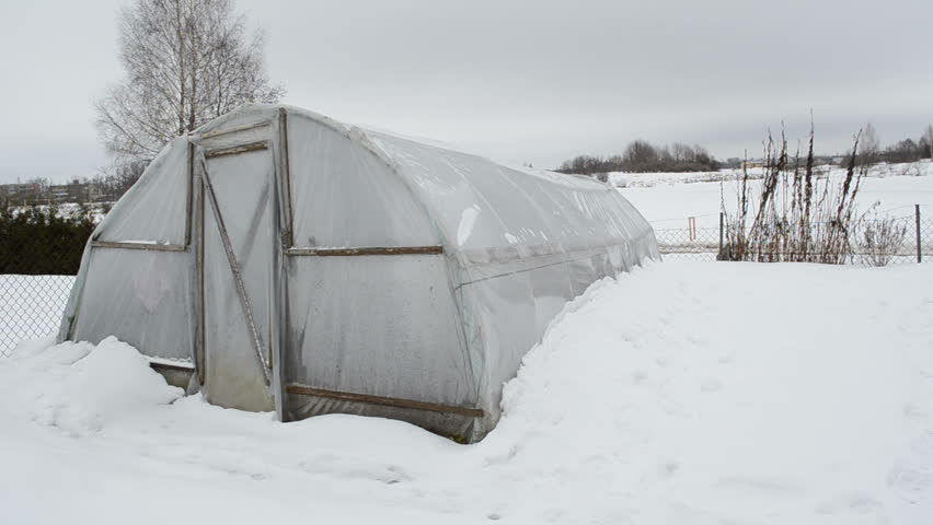 panorama of homemade wooden diy polythene greenhouse covered with snow and rotten apples in winter garden. snow falling. - HD stock footage clip