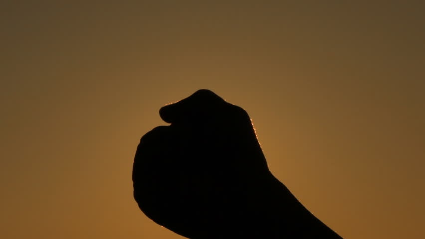 hand catches the sun in a fist at the sunset