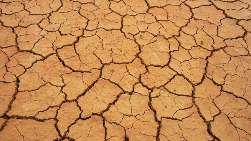 Cracked Dry land in a desert