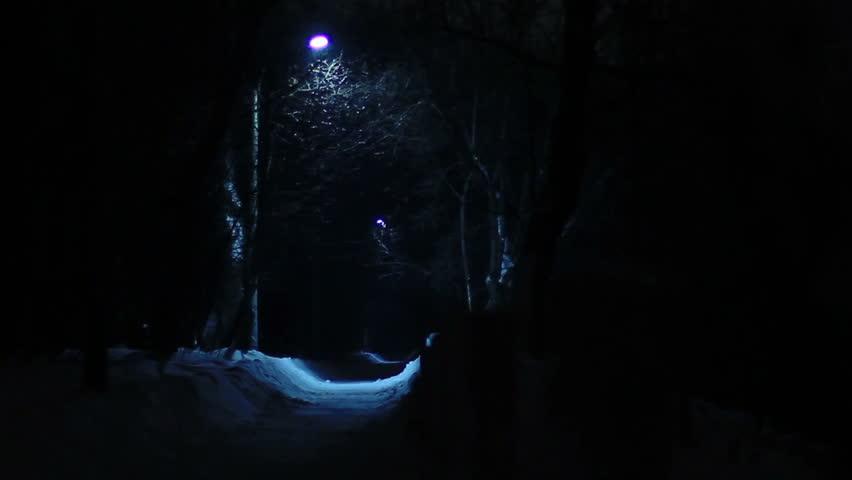 Park lantern's blue light in snowfall  night. 720p. - HD stock footage clip