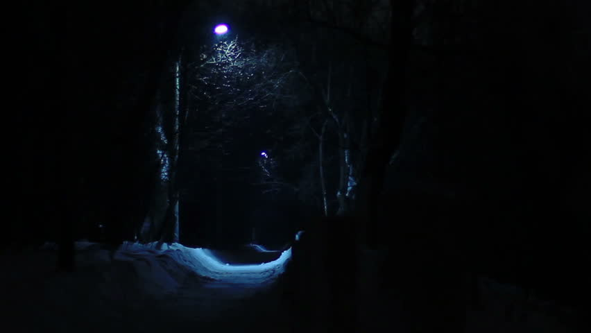 Park lantern's blue light in snowfall 