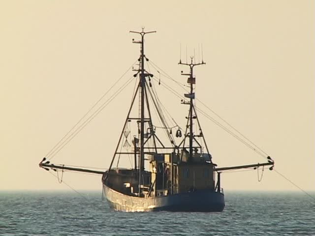 Shrimping boat on the North Sea near sunset turning.