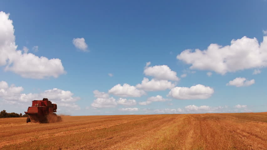 Harvester working in the field. Blue sky. The clouds are flying fast (timelapse)