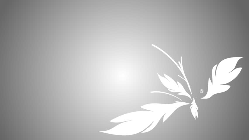 flower ornament vector design growing on background - HD stock footage clip