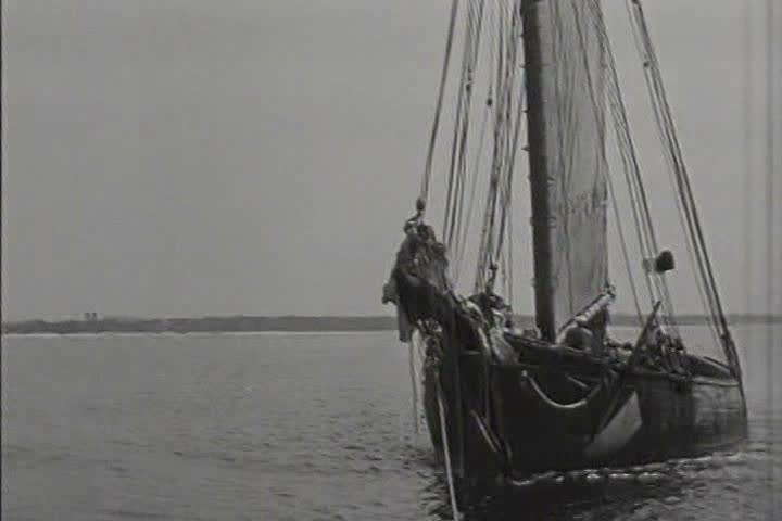 1910s commercial fishing in the gulf of mexico in 1919 for Fishing in mexico