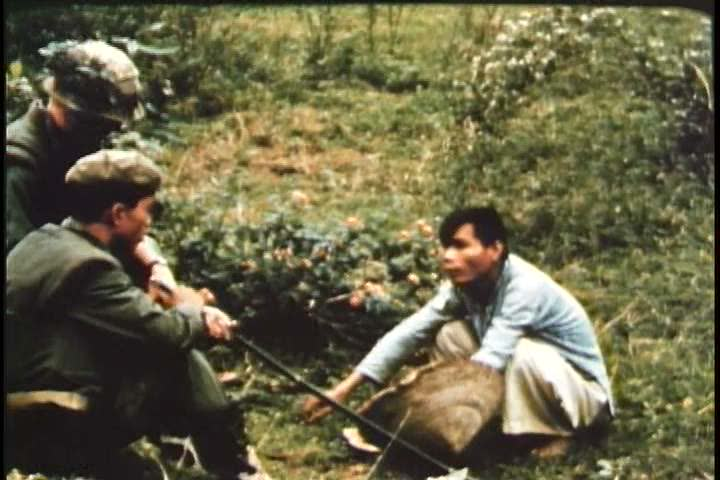 Usa and vietcong forces in the 1960s essay